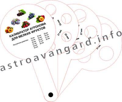 Калибратор для мелких фруктов и ягод, Оригинальные сувениры